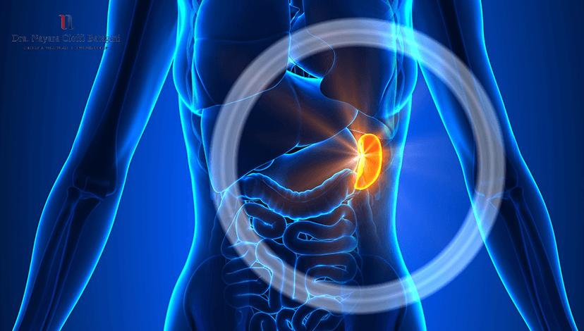 O que é Aneurisma da Artéria Esplênica?